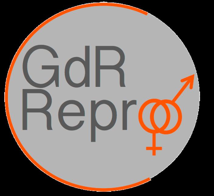 GDR gris